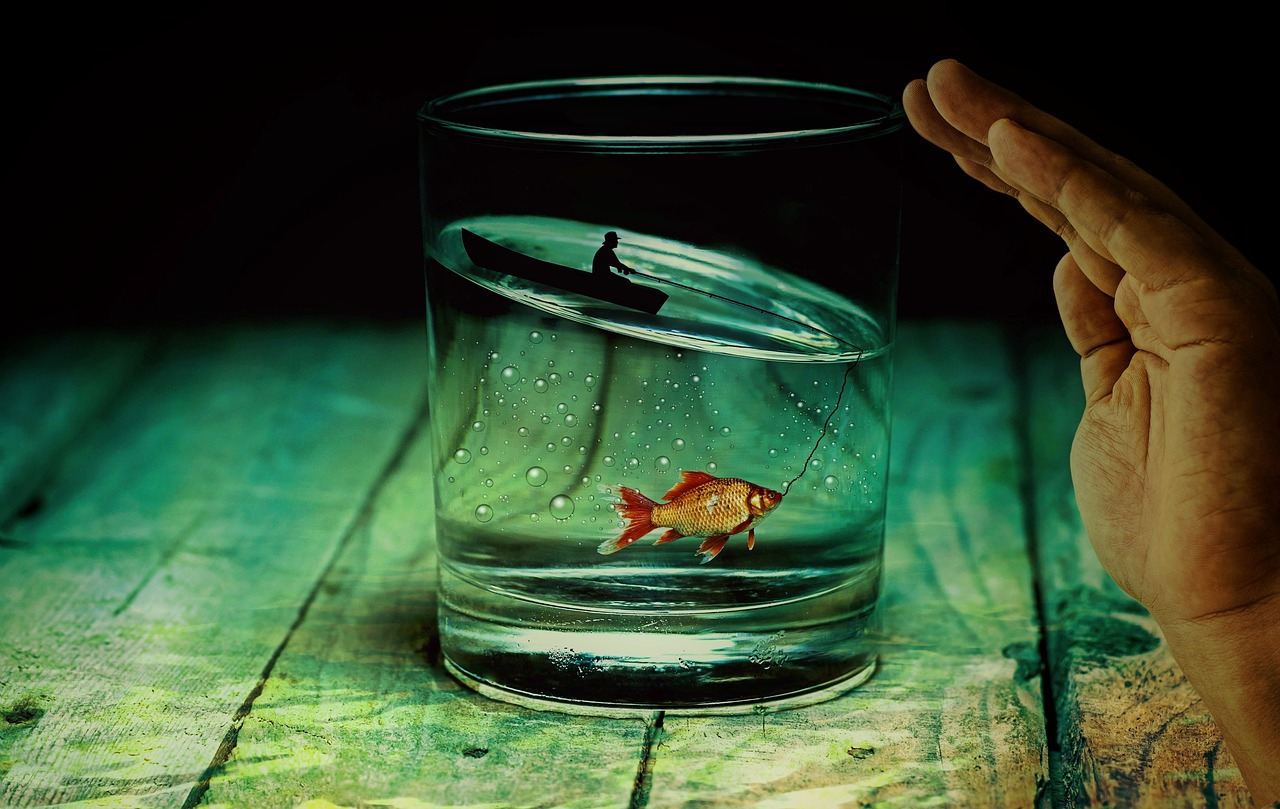 Kommunikation | Glas mit Goldfisch