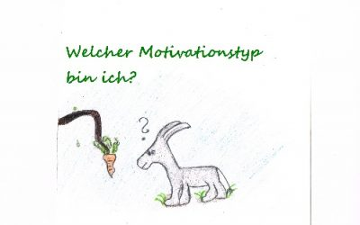 Motivation – Welcher Motivationstyp bin ich?