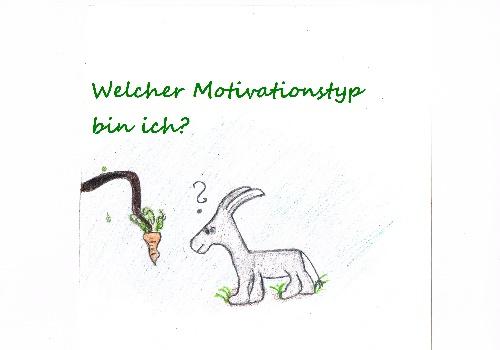 Motivation –Welcher Motivationstyp bin ich?
